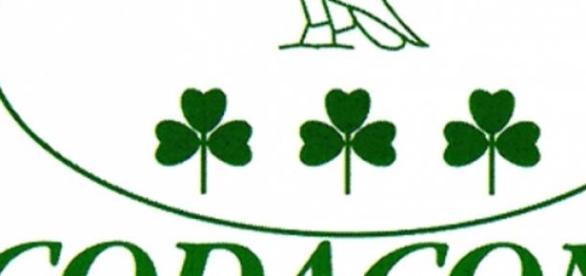 Il logo dell'associazione Codacons