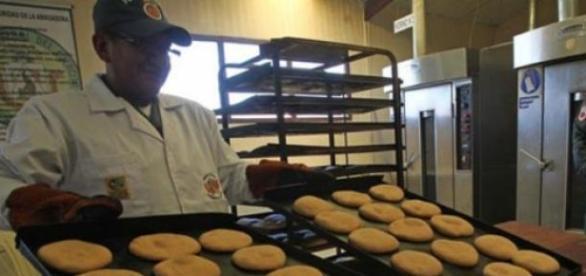 El gobierno espera triplicar la producción de pan