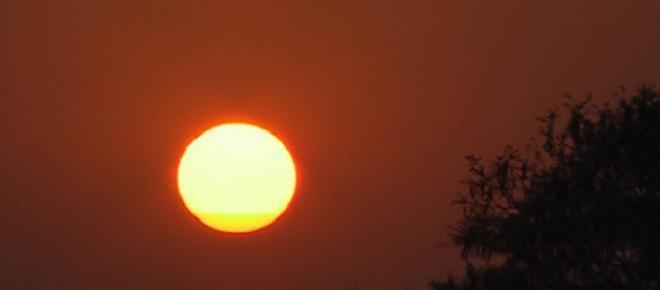 Calor extremo Índia. Imagem SOL de Alice Campos