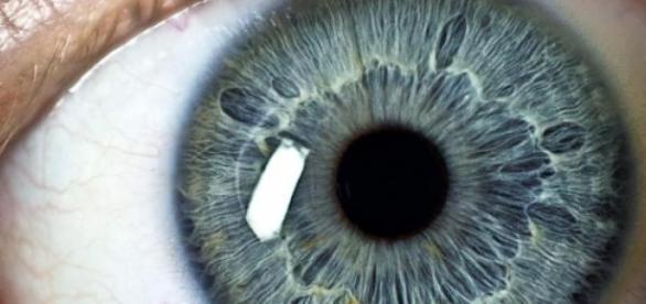Cum îţi trădează ochii cele mai acunse gânduri