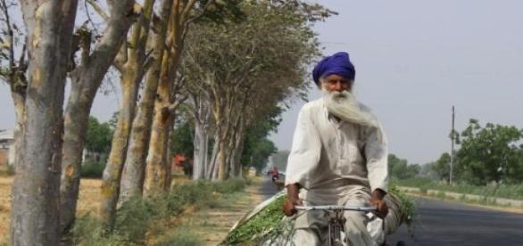 Anciano en bicicleta. India. Fuente: pixabay.com