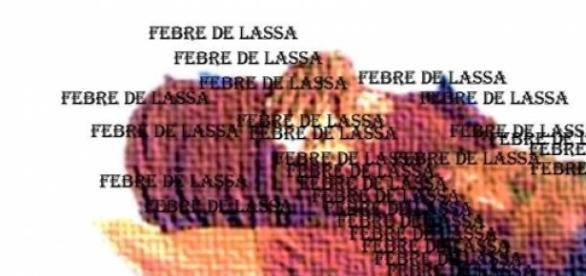 Doença de Lassa pode ser letal