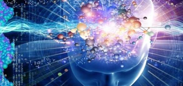 Creierul va putea fi stocat pe calculator