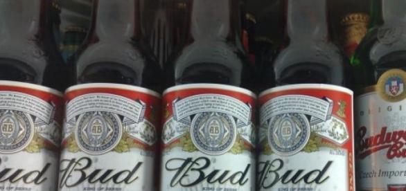 Una de las cervezas más populares, Budweiser.