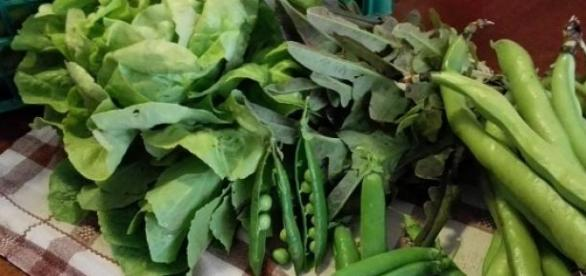 verdure di stagione per la ricetta del vignaiolo