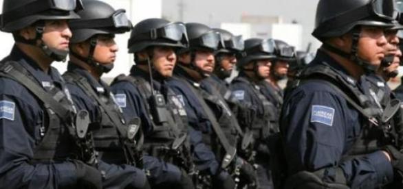 Policía de los Estados Unidos