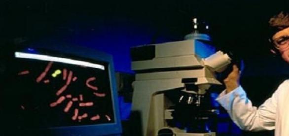 Dr. Francis Collins, opositor de modificación ADN