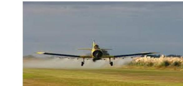 glifosato,herbicida no solo mata las malas hierbas