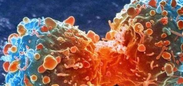 Medicamentele care vindeca cancerul