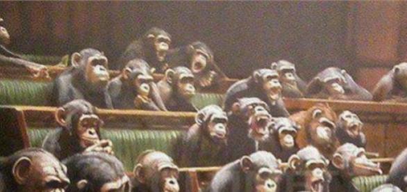 Parlamentari in sesiune de lucru