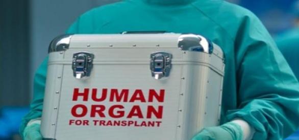 Primul transplant de penis din lume
