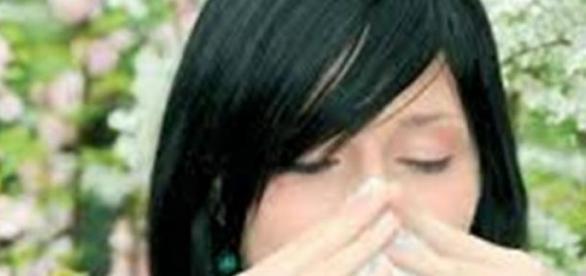 Alergiile, boala secolului