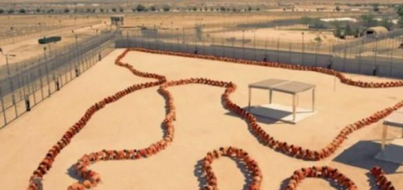 Human Centipede 3 on its way to cinemas.