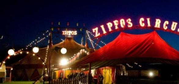 Zippos circus comes to Scotland.