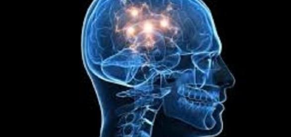 creierul uman si imbatranirea acestuia