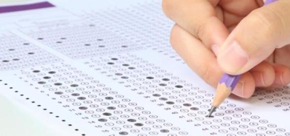 Processos seletivos no setor da educação