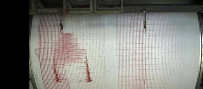 Cutremurul a fost înregistrat de seismografele din ţară