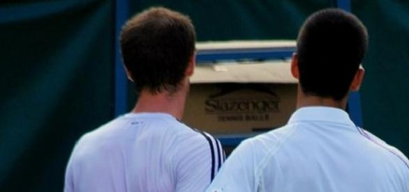 'Back' in another semi: Murray and Djokovic