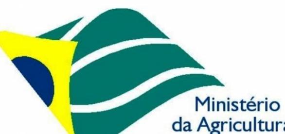 MAPA abre diversas vagas para estagiários