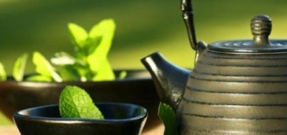 Extract de ceai verde bun