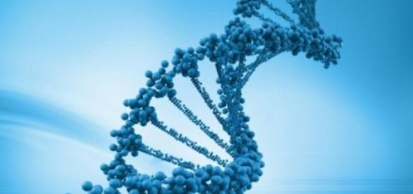 Quien diria que el ADN tenía una forma tan bella