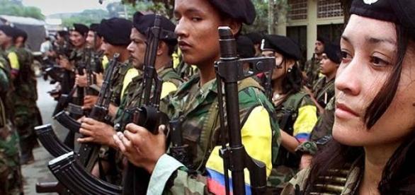 Tropas das Farc reunidas na Colômbia