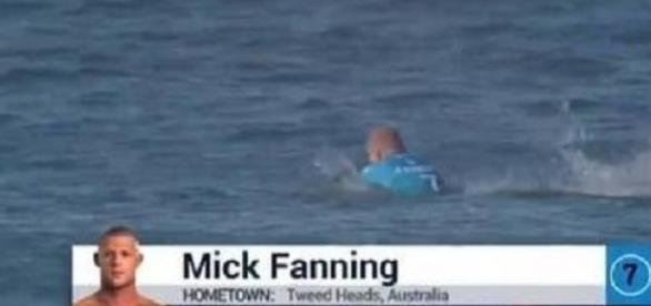 Surfista atacado por tubarão não se feriu
