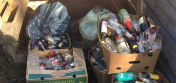 Der Rest von Newtopia... ein Haufen Müll.