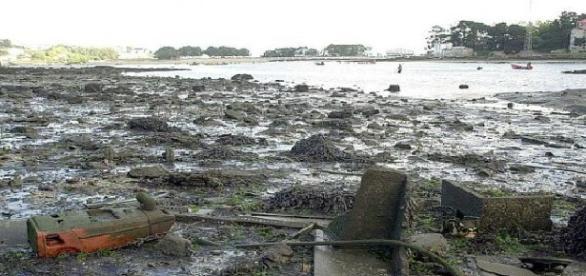 Lodos y contaminación en la ría de O Burgo