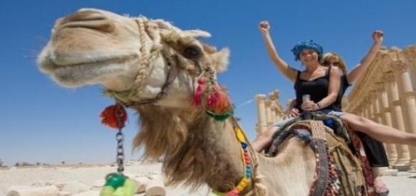 MSZ odradza polskim turystom wyjazdy do Egiptu