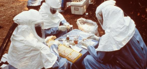 Varios científicos investigando