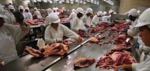 Carne argentina será exportada a EE.UU.
