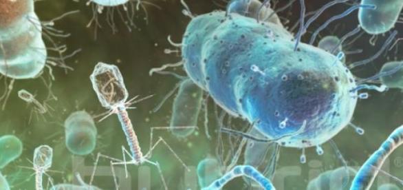 Virusii rezistenti la medicamente