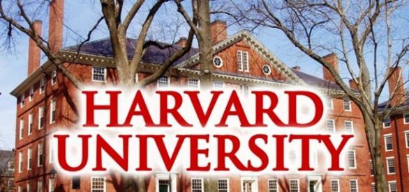 Universidades de ponta que oferecem cursos grátis