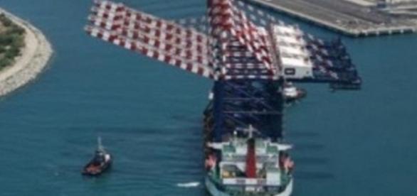 El buque llevaba calamares y ocultaba cocaína pura