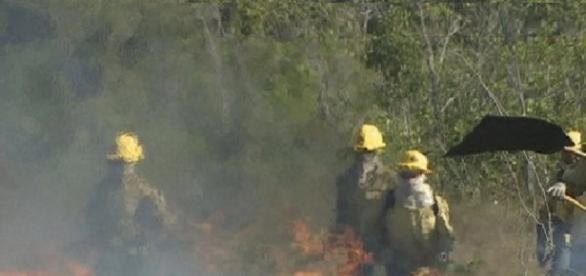 incêndio no parque nacional dos campos amazônicos.