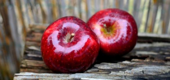 Os benefícios da maçã. Foto: pixabay.