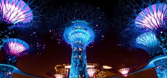 Vista nocturna con los árboles artificiales