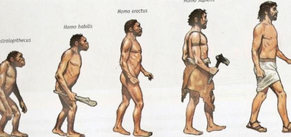 O homem evoluiu e se tornou um superpredador