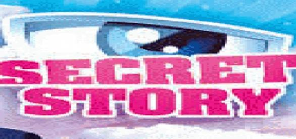 photo logo neuvieme saison de secret story