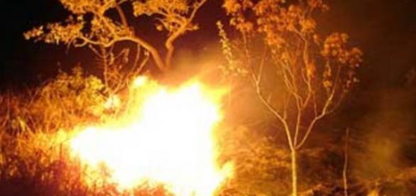 Site permite ver panorama dos fogos em Portugal