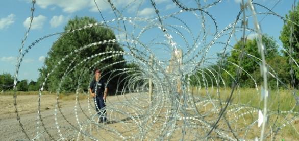 Hungría construye un muro en frontera con Serbia