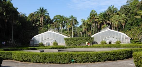 Jardim Botânico - Um refúgio em meio a metrópole