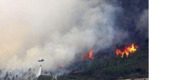 incendio forestal declarado en Acebo.
