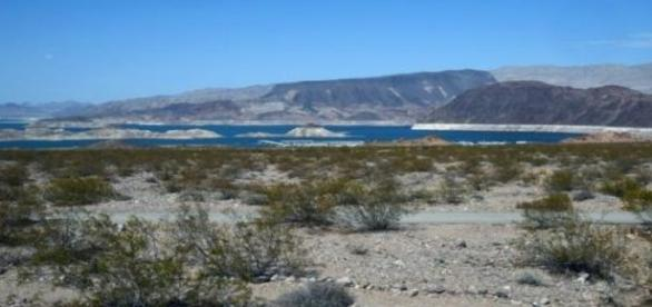 Le désert du Nouveau-Méxique (Etats-Unis)