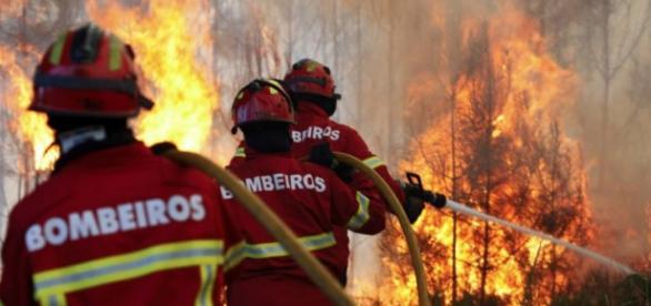 Bombeiros portugueses estão em Espanha.