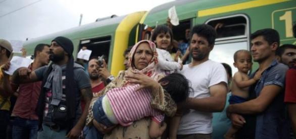 Czy imigranci naprawdę potrzebują pomocy?