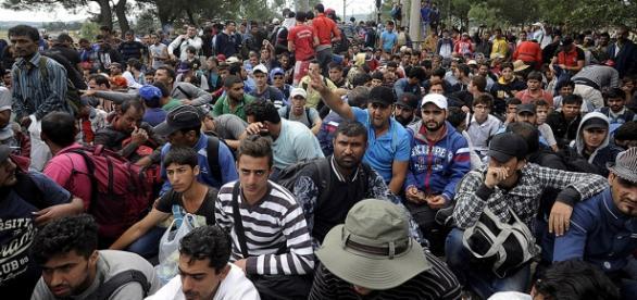 Imigranții au ținte bine definite, nu fug haotic