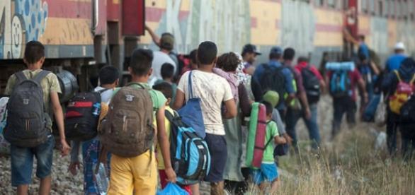 Un roman ofera cazare pentru 1000 de imigranti