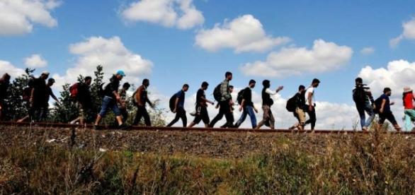 Imigranci przybywają do Europy - © UNHCR/M.Henley